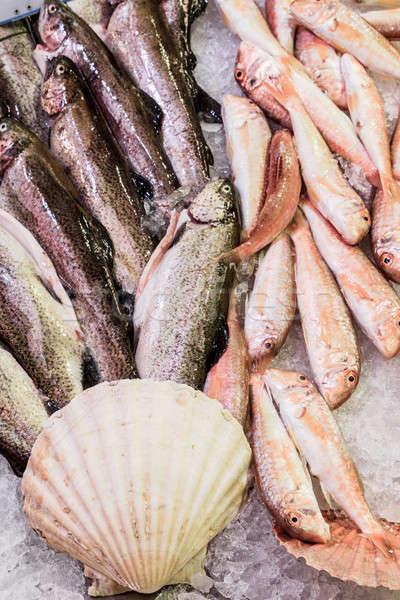 Fresche pesce mare alimentare locale mercato Foto d'archivio © Bertl123