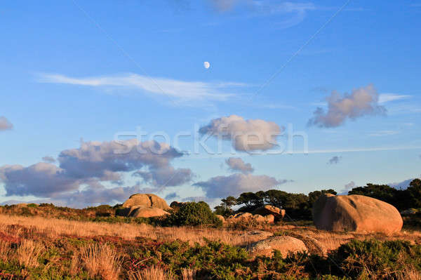 Beautiful landscape with granite boulders, Brittany, France Stock photo © Bertl123