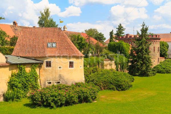 Takviye Çek Çek Cumhuriyeti bahçe mavi Stok fotoğraf © Bertl123