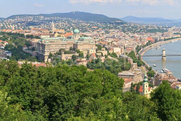 Buda Castle and Danube, Budapest, Hungary Stock photo © Bertl123