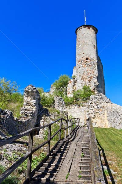 Kastély romok alsó Ausztria ép rom Stock fotó © Bertl123