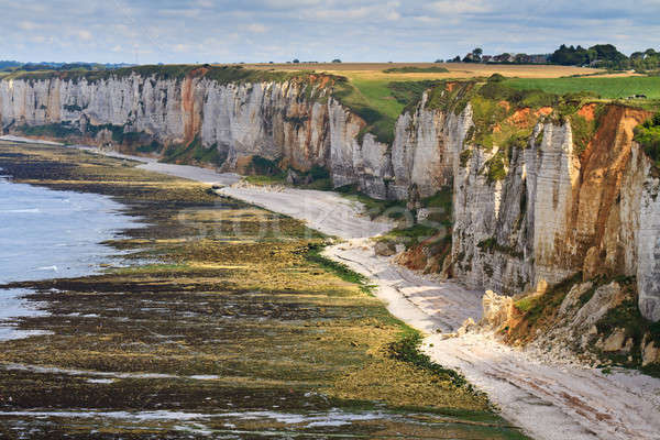 Cliffs near Etretat and Fecamp, Normandy, France Stock photo © Bertl123