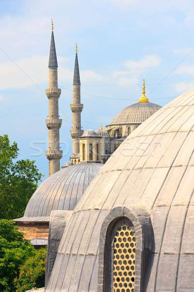Istanbul Blue Mosque with Hagia Sophia dome in foreground Stock photo © Bertl123