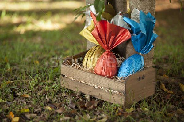 Jaj koszyka drzewo trawy czekolady jaj Zdjęcia stock © betochagas