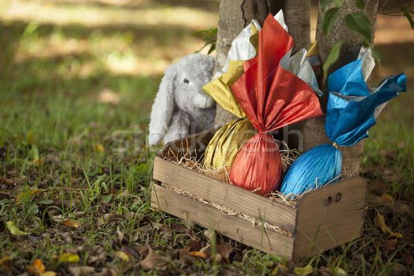 яйца корзины дерево Bunny трава шоколадом Сток-фото © betochagas