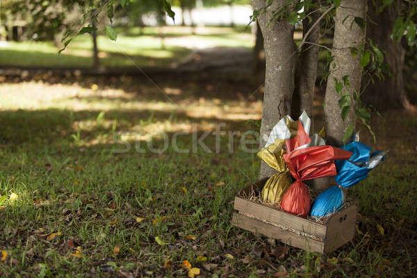 яйца корзины дерево трава шоколадом яйцо Сток-фото © betochagas
