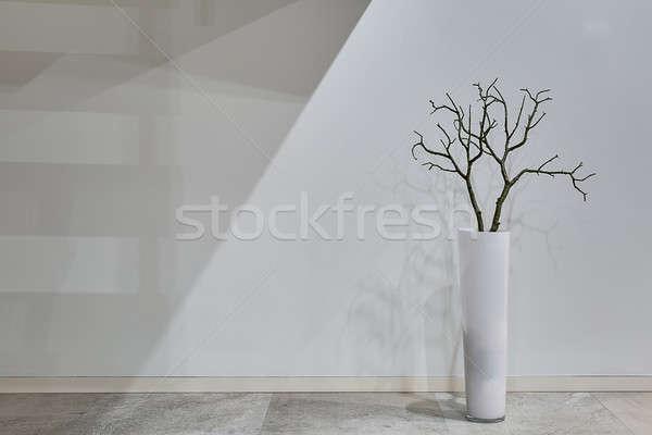 Photo stock: Usine · vase · blanche · laisse · étage · mur