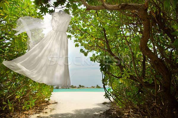 ウェディングドレス 絞首刑 緑 モルディブ 結婚式 ファッション ストックフォト © bezikus
