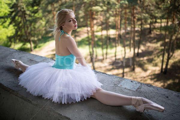 Bevallig ballerina witte vergadering beton brug Stockfoto © bezikus