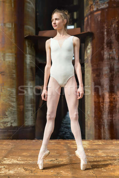 Graceful ballerina on pointe against a background rusty backgrou Stock photo © bezikus