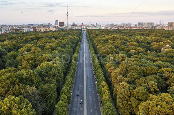 Highway between green trees in Berlin Stock photo © bezikus