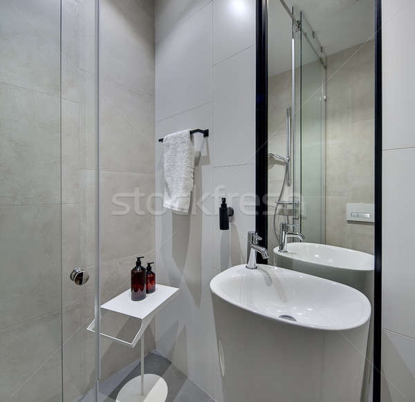 Bathroom in modern style Stock photo © bezikus
