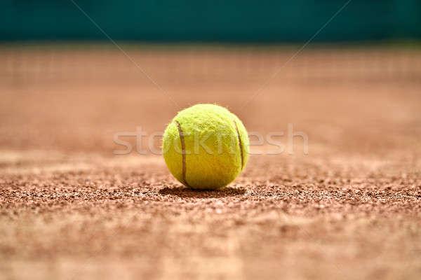 теннисный мяч землю фото желтый суд Сток-фото © bezikus