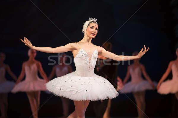 Prima ballerina white swan Stock photo © bezikus