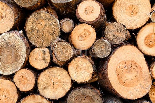 Woodstack background  Stock photo © bezikus