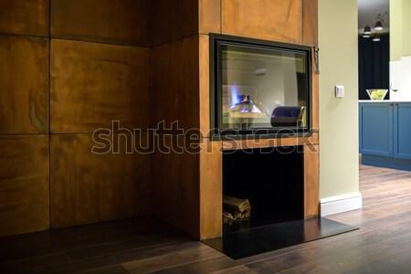Haard brandend brandhout donkere glas deur Stockfoto © bezikus