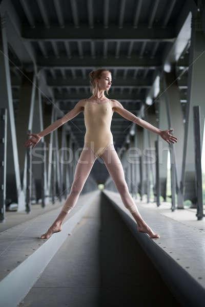 Portré fiatal kecses ballerina fürdőruha póz Stock fotó © bezikus