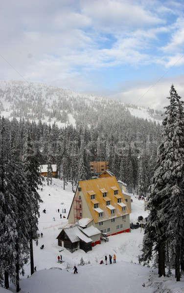 winter in mounting Stock photo © bezikus