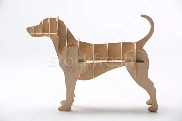 Джек Рассел собаки модель белый Сток-фото © bezikus