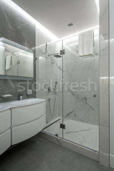 Light bathroom in modern style Stock photo © bezikus