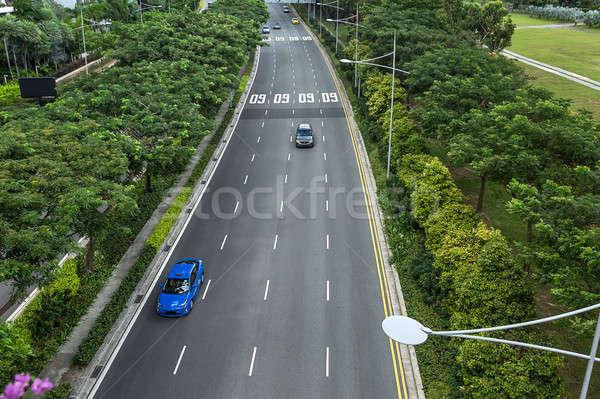 Green roadway with cars Stock photo © bezikus