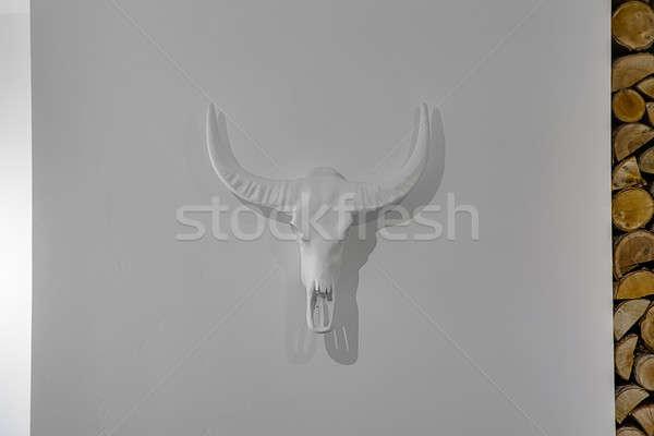 Decorative buffalo skull Stock photo © bezikus
