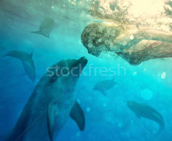 Subaquatique dialogue fille eau dauphins collage Photo stock © bezikus