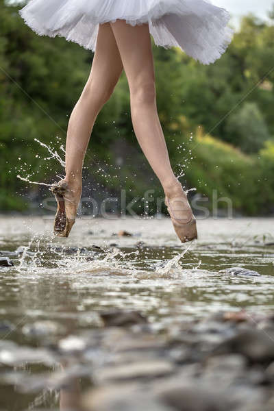 Ballerina ugrik folyó csodálatos sekély zöld Stock fotó © bezikus