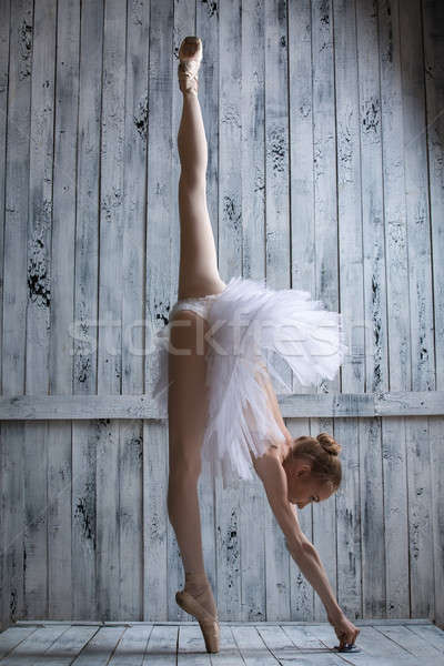 Piedi uno toe grazioso ballerina gamba Foto d'archivio © bezikus