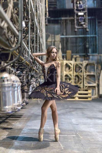 Ballerina pózol belső hihetetlen nagy színpad Stock fotó © bezikus