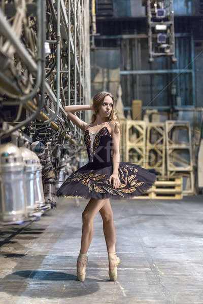 Ballerina posing in interior Stock photo © bezikus