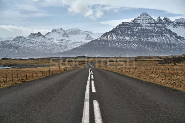 Country roadway in Iceland Stock photo © bezikus