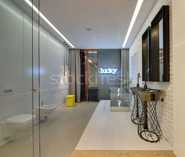 Loft style bathroom Stock photo © bezikus