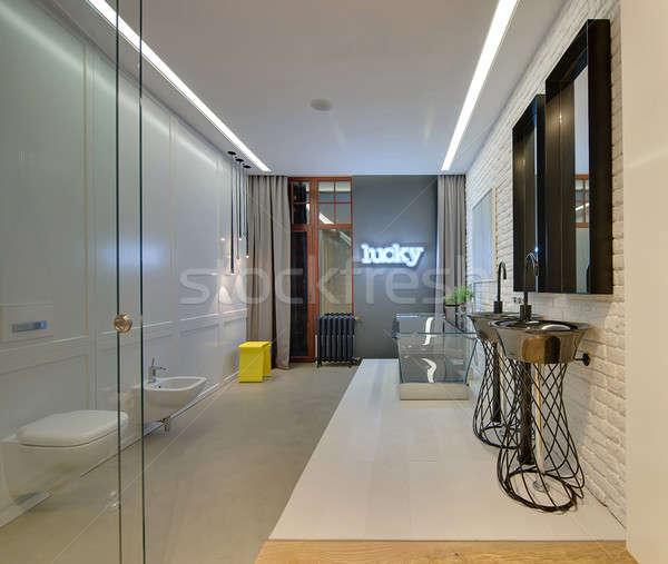 Strych stylu łazienka świetle cegły ściany Zdjęcia stock © bezikus