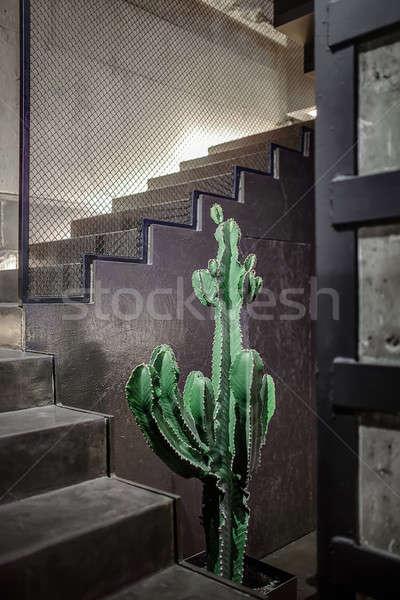 インテリア ロフト スタイル ビッグ 緑 サボテン ストックフォト © bezikus