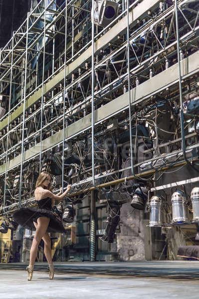 Ballerina pózol belső elegáns nagy színpad Stock fotó © bezikus