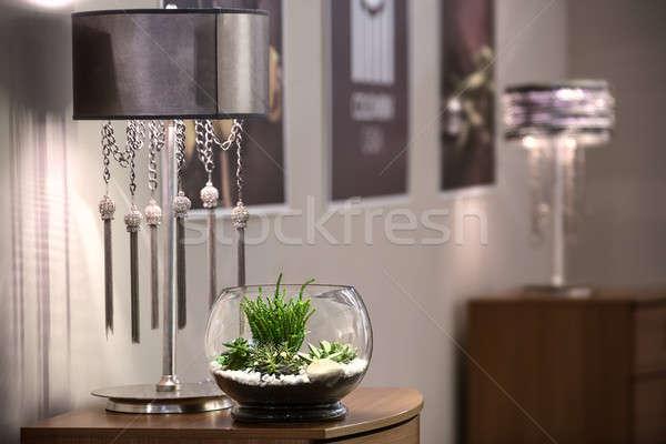Pflanzen Vase Glas stehen Haus Baum Stock foto © bezikus