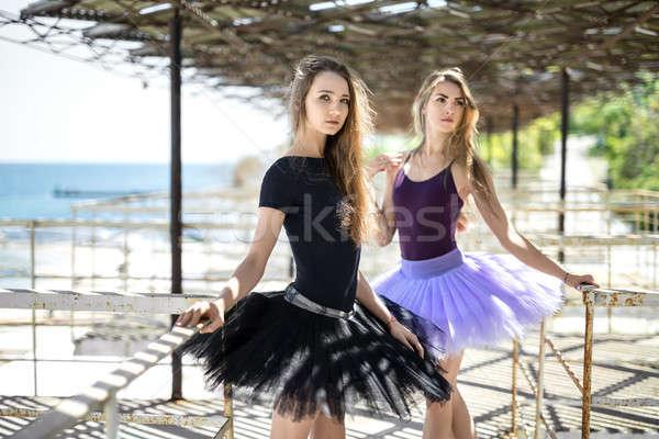 Balett táncosok pózol kint kettő áll Stock fotó © bezikus