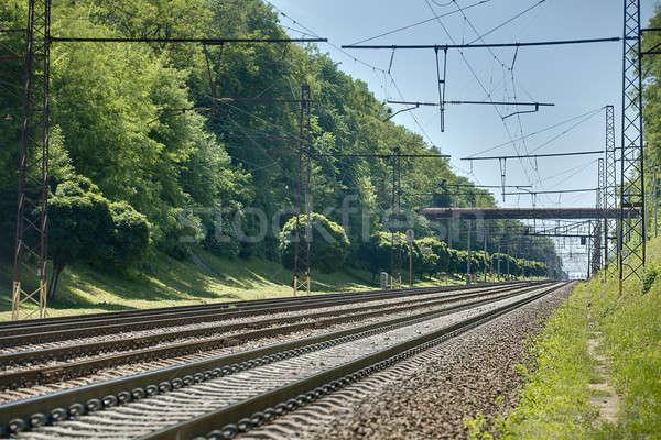 Foto stock: Foto · ferrocarril · perspectiva · verde · verano · naturaleza