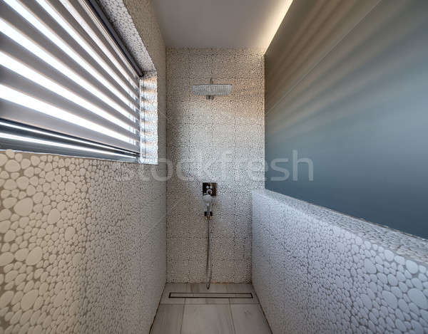 Stylish bathroom in modern style Stock photo © bezikus