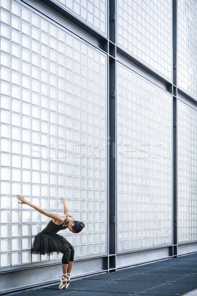 Beautiful ballerina posing outdoors Stock photo © bezikus