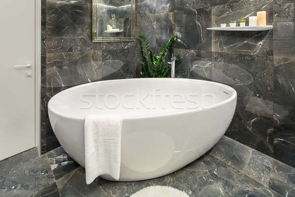 Luxury bathroom in modern style Stock photo © bezikus