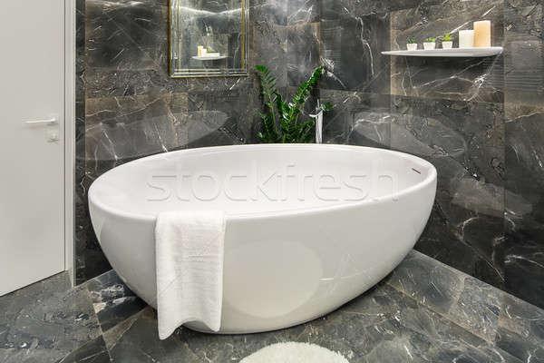 Lüks banyo modern tarzda karanlık Stok fotoğraf © bezikus
