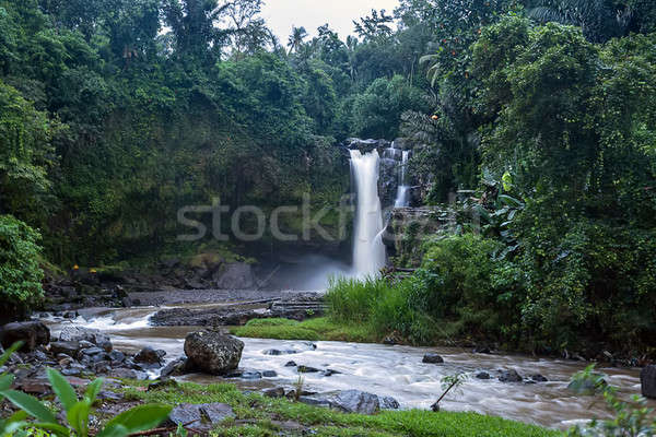 Waterval rivier klein veel rotsen stenen Stockfoto © bezikus