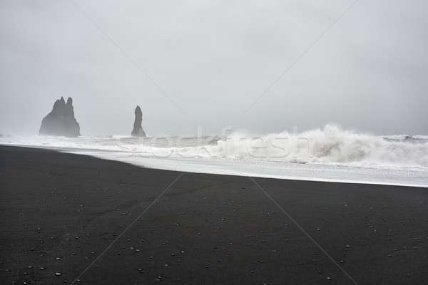 Icelandic landscape of black sand beach Stock photo © bezikus