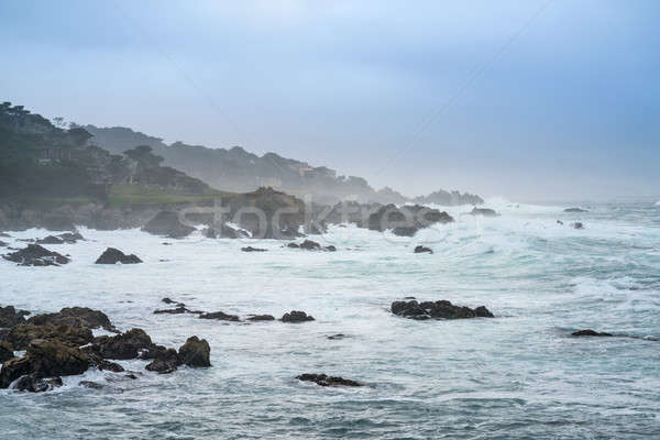 Pebble Beach in San Francisco Stock photo © bezikus