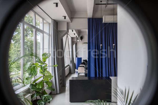 Stockfoto: Stijlvol · interieur · vliering · stijl · grijs · muren