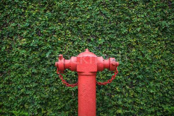 Closeup photo of fire hydrant Stock photo © bezikus