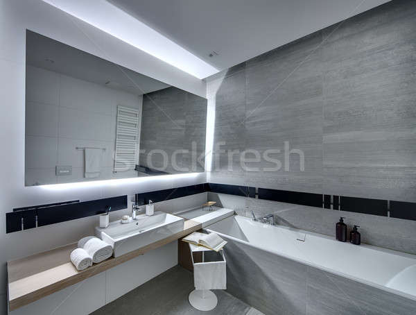 Banyo modern tarzda çağdaş kiremitli beyaz gri Stok fotoğraf © bezikus