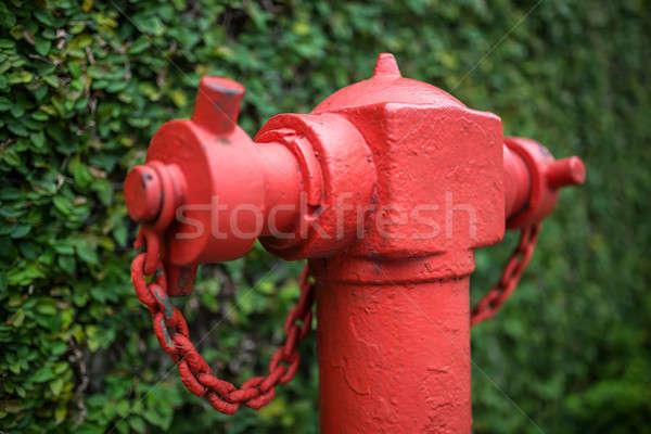 Macro photo of fire hydrant Stock photo © bezikus